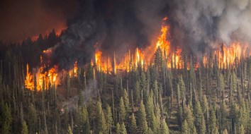 Forest Fires Aren't at Historic Highs in the United States. Not Even Close
